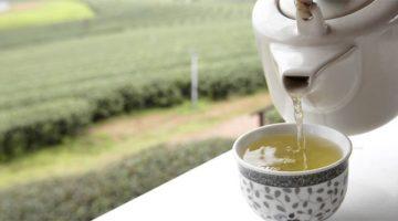 Beyaz çayın faydaları nelerdir ?
