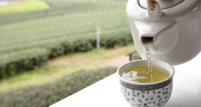 beyaz çayın faydaları nelerdir