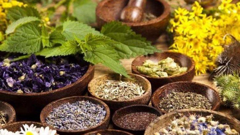 Evinizden Eksik Etmemeniz Gereken 5 Şifalı Bitki