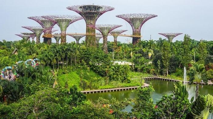 2. singapur botanik bahçeleri, singapur