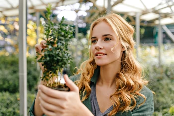 dünyanın en güzel 7 botanik bahçesi (2021)